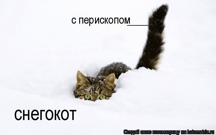 Котоматрица: снегокот с перископом ____