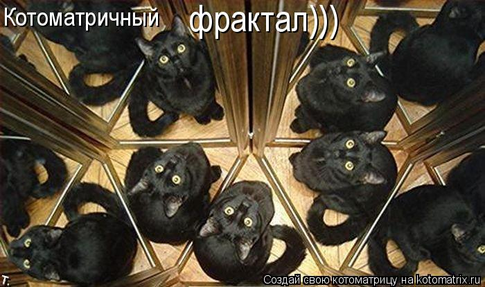 Котоматрица: Котоматричный фрактал)))