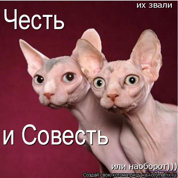 Котоматрица: Честь их звали  или наоборот))) и Совесть и Совесть