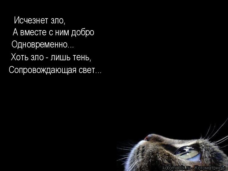 Котоматрица: Исчезнет зло, А вместе с ним добро Одновременно... Хоть зло - лишь тень, Сопровождающая свет...