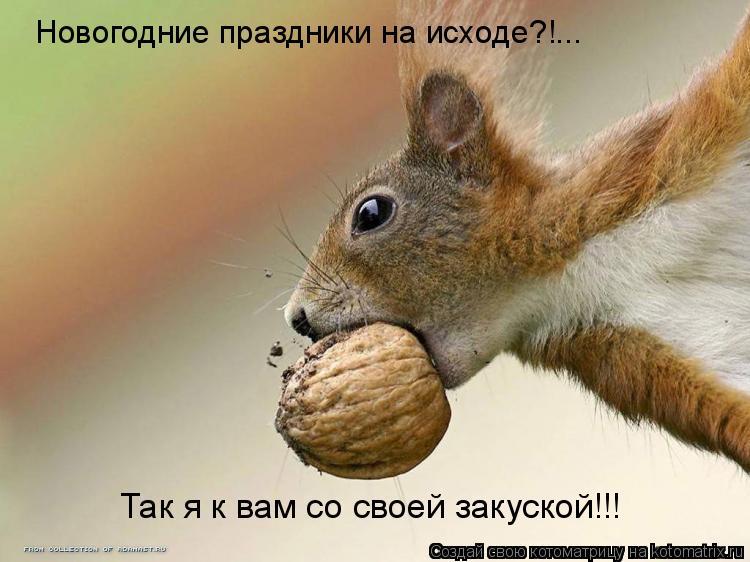 Котоматрица: Новогодние праздники на исходе?!... Так я к вам со своей закуской!!!