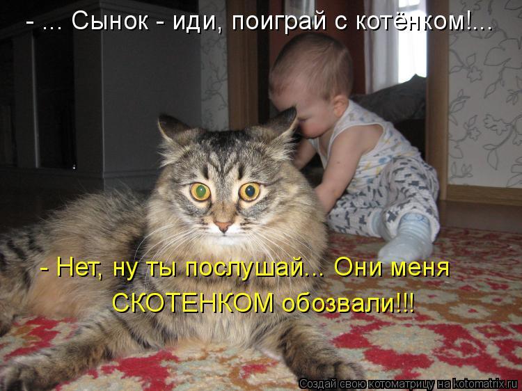 - ... Сынок - иди, поиграй с котёнком!... - Нет, ну ты послушай... Они