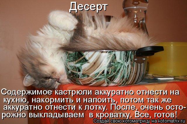 Котоматрица: Содержимое кастрюли аккуратно отнести на   кухню, накормить и напоить, потом так же  рожно выкладываем  в кроватку. Все, готов!  аккуратно отн