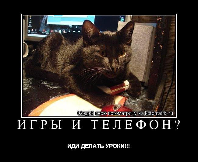 Котоматрица: игры и телефон? ИДИ ДЕЛАТЬ УРОКИ!!!