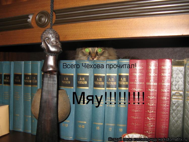 Котоматрица: Всего Чехова прочитал! Мяу!!!!!!!!!