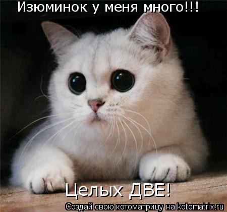Котоматрица - Изюминок у меня много!!! Целых ДВЕ!
