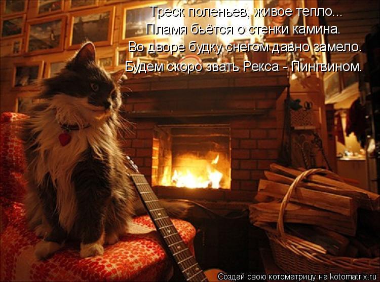 Котоматрица: Треск поленьев, живое тепло... Пламя бьётся о стенки камина. Во дворе будку снегом давно замело. Будем скоро звать Рекса - Пингвином.