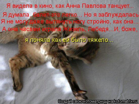 Котоматрица: Я видела в кино, как Анна Павлова танцует... Я думала, балет-это легко... Но я заблуждалась Я не могу даже вытянуть ногу стройно, как она... А она