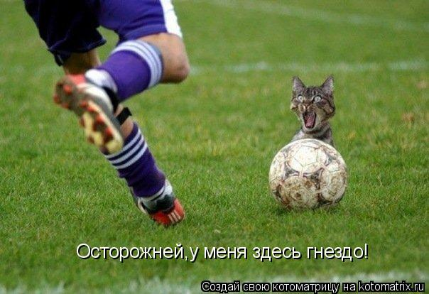 http://kotomatrix.ru/images/lolz/2011/02/24/833361.jpg