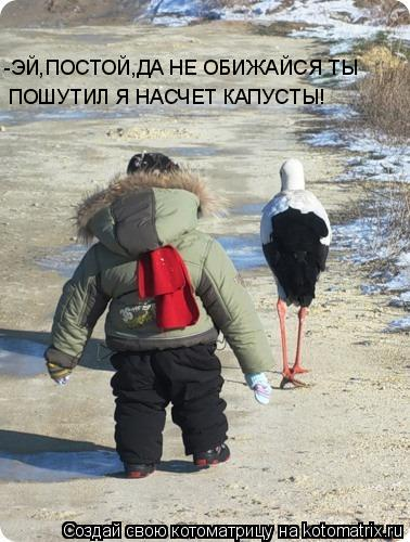 Котоматриця!)))) - Страница 6 833611