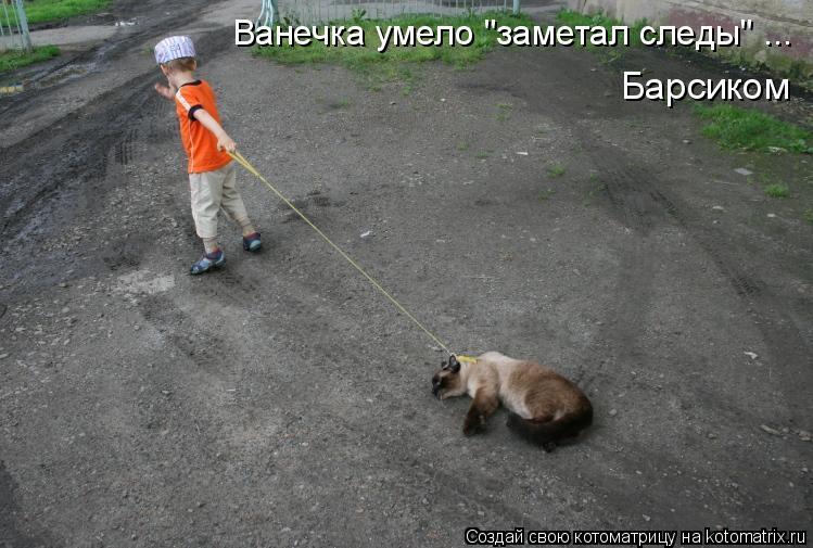"Котоматрица: Ванечка умело ""заметал следы"" ... Барсиком"