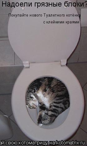 Котоматрица: Надоели грязные блоки? Покупайте нового Туалетного котёнка с клейкими краями