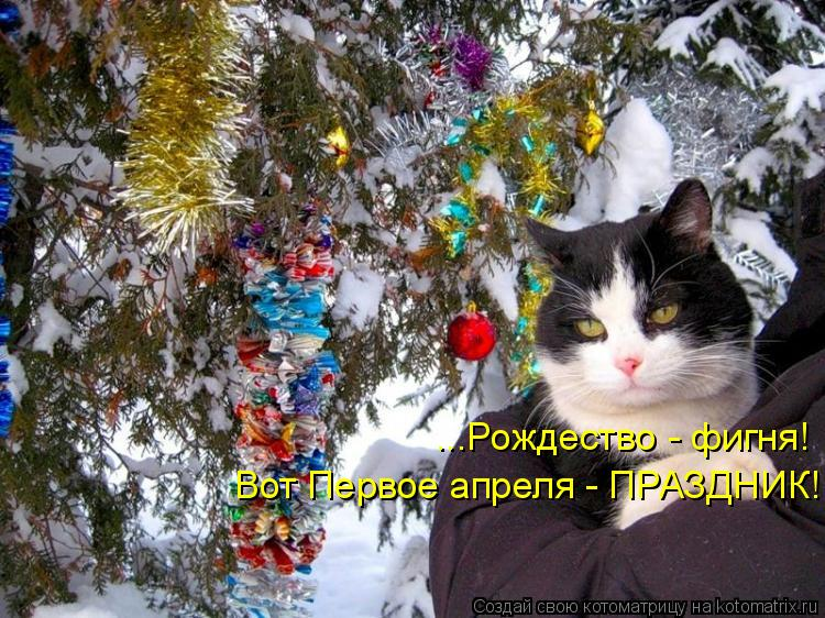 Котоматрица: ...Рождество - фигня! Вот Первое апреля - ПРАЗДНИК!