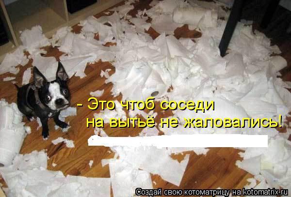 Котоматрица: - Это чтоб соседи  на вытье не жаловались! ..