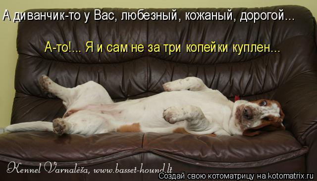 Котоматрица: А диванчик-то у Вас, любезный, кожаный, дорогой...  А-то!... Я и сам не за три копейки куплен...