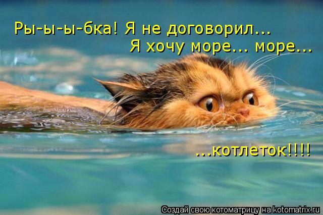 Котоматрица: Ры-ы-ы-бка! Я не договорил... Я хочу море... море... ...котлеток!!!!