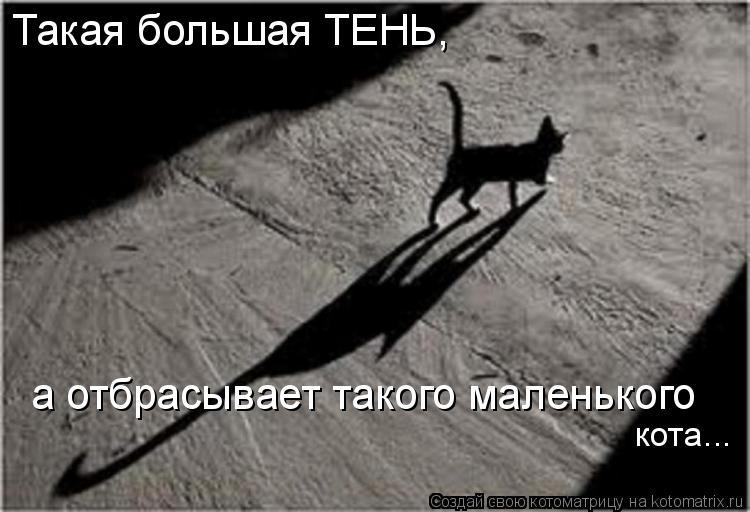 Котоматрица: Такая большая ТЕНЬ,  а отбрасывает такого маленького кота...