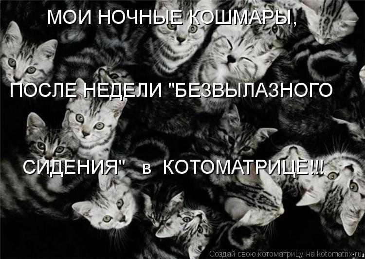 """Котоматрица: МОИ НОЧНЫЕ КОШМАРЫ, ПОСЛЕ НЕДЕЛИ """"БЕЗВЫЛАЗНОГО СИДЕНИЯ""""   в  КОТОМАТРИЦЕ!!!"""