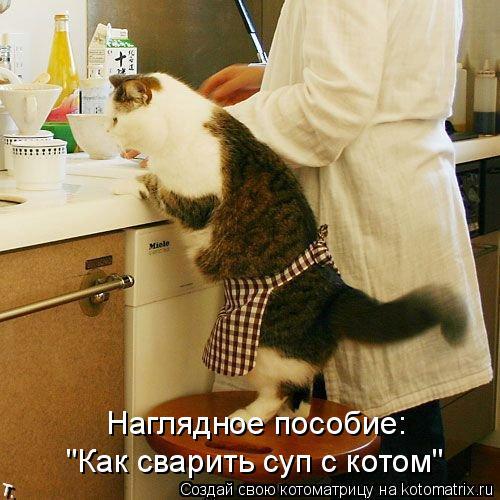 """Котоматрица: Наглядное пособие: """"Как сварить суп с котом"""""""