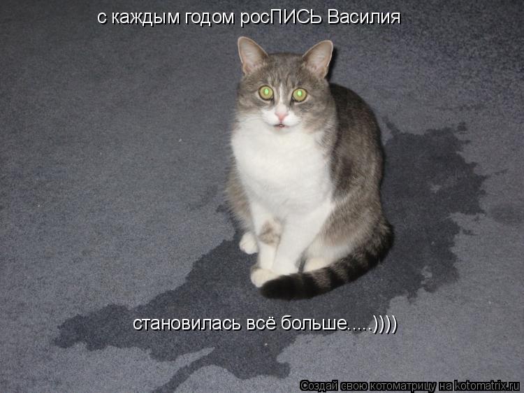 Котоматрица: с каждым годом росПИСЬ Василия становилась всё больше.....))))