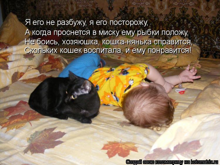 Котоматрица: Я его не разбужу, я его посторожу, А когда проснется в миску ему рыбки положу, Не боись, хозяюшка, кошка-нянька справится, Скольких кошек восп