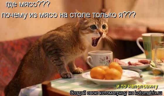 Котоматрица: где мясо??? почему из мясо на столе только я??? и то наполовину