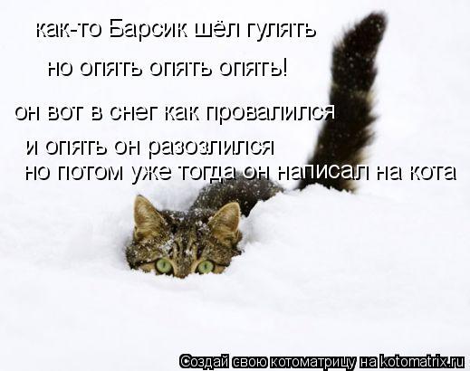 Котоматрица: как-то Барсик шёл гулять но опять опять опять! он вот в снег как провалился и опять он разозлился но потом уже тогда он написал на кота