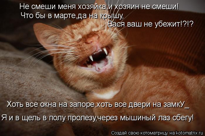 Котоматрица: Не смеши меня хозяйка,и хозяин не смеши! Что бы в марте,да на крышу, Вася ваш не убежит!?!? Я и в щель в полу пролезу,через мышиный лаз сбегу! Хот