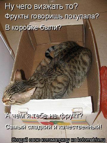 Котоматрица: Ну чего визжать то?  Фрукты говоришь покупала? В коробке были? А чем я тебе не фрукт? Самый сладкий и качественный!