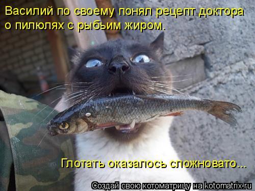 Котоматрица: Василий по своему понял рецепт доктора о пилюлях с рыбьим жиром. Глотать оказалось сложновато...