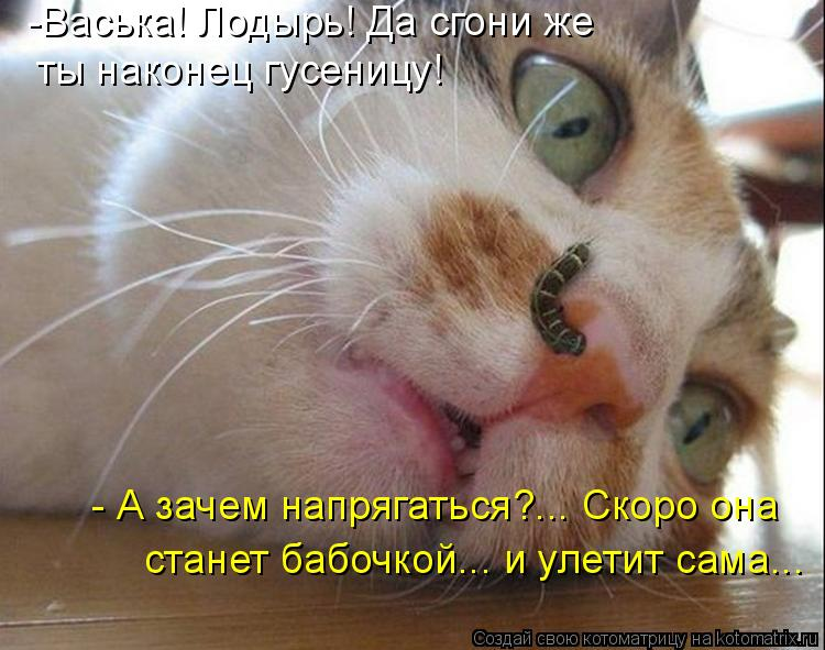 Герб россии картинка черно белая