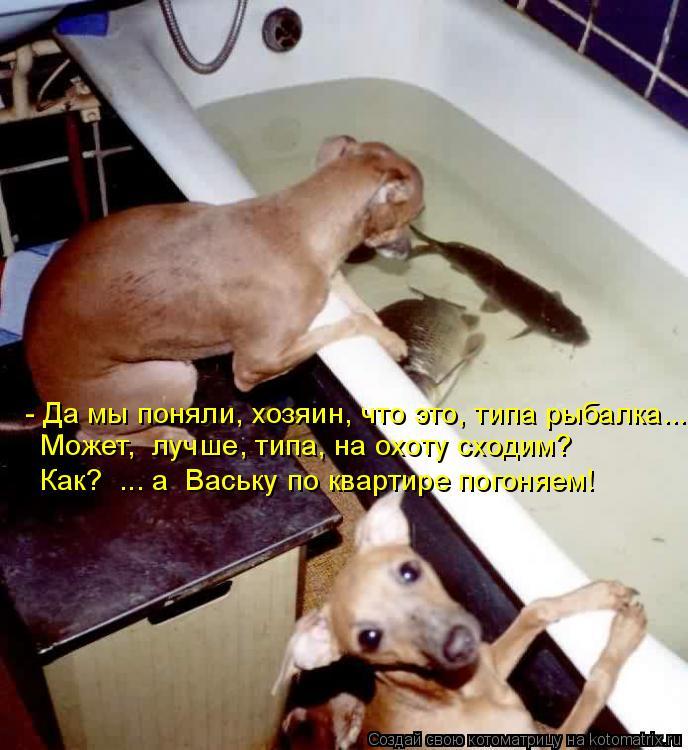 Котоматрица: - Да мы поняли, хозяин, что это, типа рыбалка...   Может,  лучше, типа, на охоту сходим? Как?  ... а  Ваську по квартире погоняем!