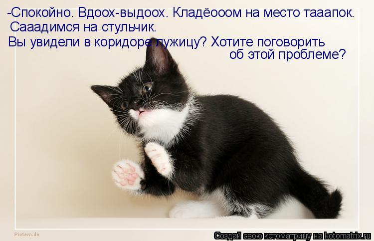 http://kotomatrix.ru/images/lolz/2011/02/28/837872.jpg