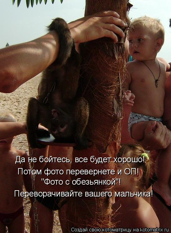 """Котоматрица: Да не бойтесь, все будет хорошо!  Потом фото перевернете и ОП!  """"Фото с обезьянкой""""! Переворачивайте вашего мальчика!"""