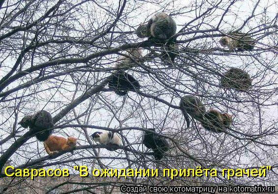 """Саврасов """"В ожидании прилёта грачей"""""""