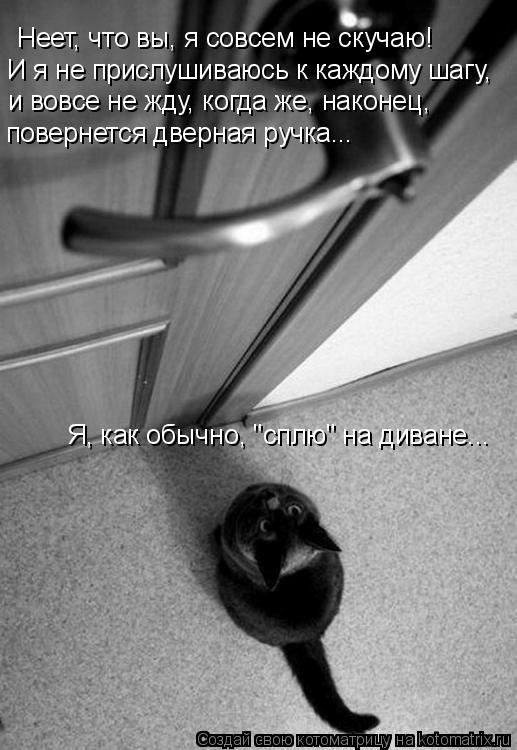 Котоматрица: Неет, что вы, я совсем не скучаю!  И я не прислушиваюсь к каждому шагу,  и вовсе не жду, когда же, наконец,  повернется дверная ручка... Я, как обы