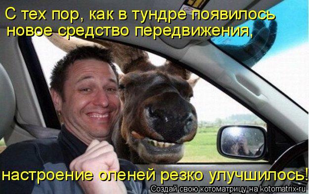 Котоматрица: С тех пор, как в тундре появилось  новое средство передвижения, настроение оленей резко улучшилось!