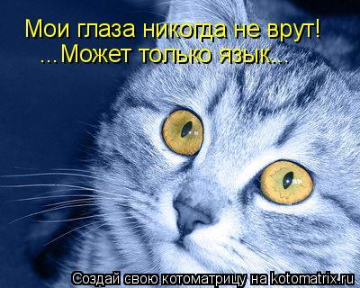 Котоматрица: Мои глаза никогда не врут! ...Может только язык...