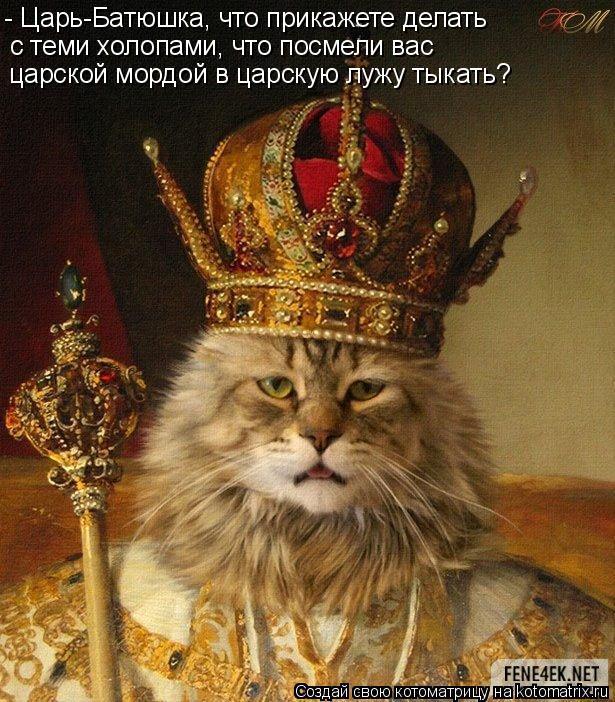Котоматрица: - Царь-Батюшка, что прикажете делать с теми холопами, что посмели вас  царской мордой в царскую лужу тыкать?