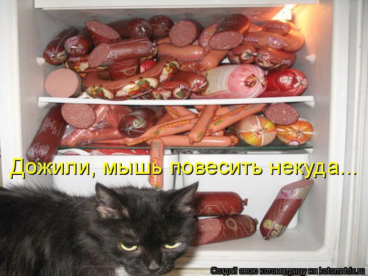 Котоматрица: Дожили, мышь повесить некуда...