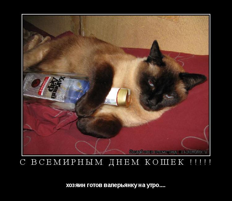 Котоматрица: C всемирным днем кошек !!!!! хозяин готов валерьянку на утро....