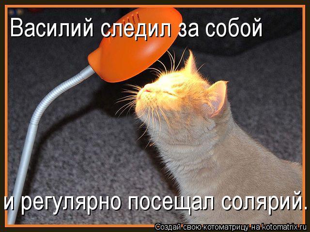 Котоматрица: Василий следил за собой и регулярно посещал солярий...