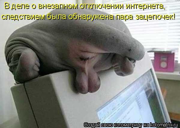 В деле о внезапном отключении интернета,  следствием была обнаружена п