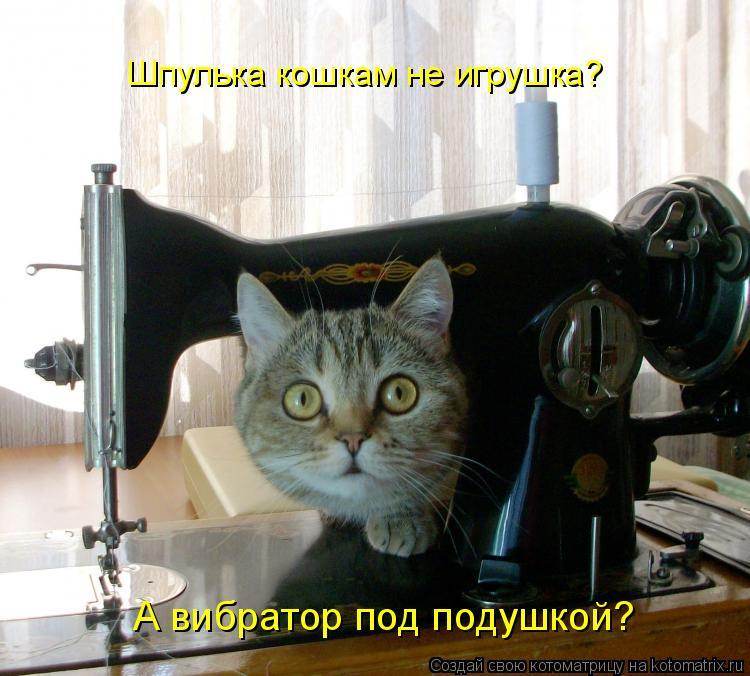 Шпулька кошкам не игрушка? А вибратор под подушкой?