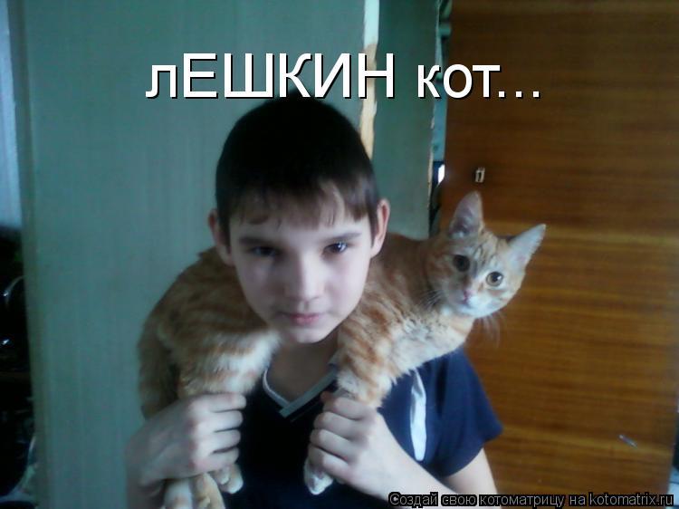 Котоматрица: лЕШКИН кот...