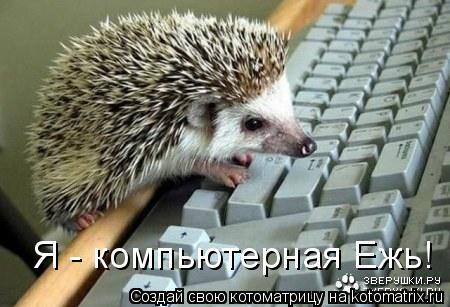 Котоматрица: Я - компьютерная Ежь!