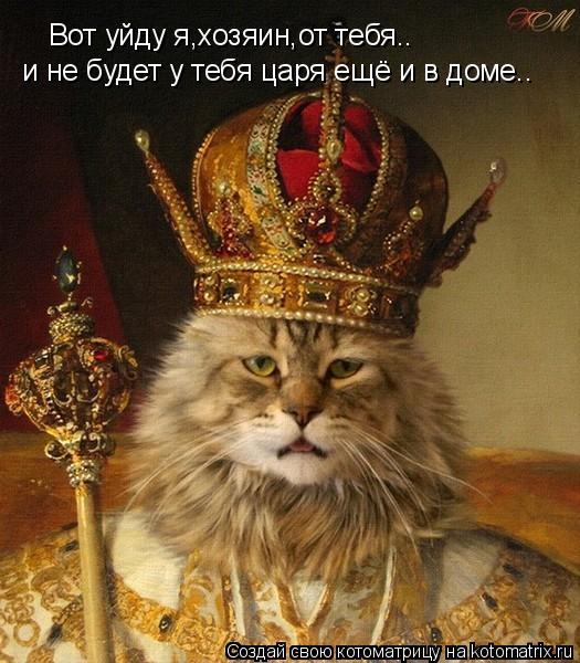 Котоматрица: Вот уйду я,хозяин,от тебя.. и не будет у тебя царя ещё и в доме..