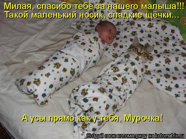 Котоматрица: Милая, спасибо тебе за нашего малыша!!! Такой маленький носик, сладкие щёчки... А усы прямо как у тебя, Мурочка!