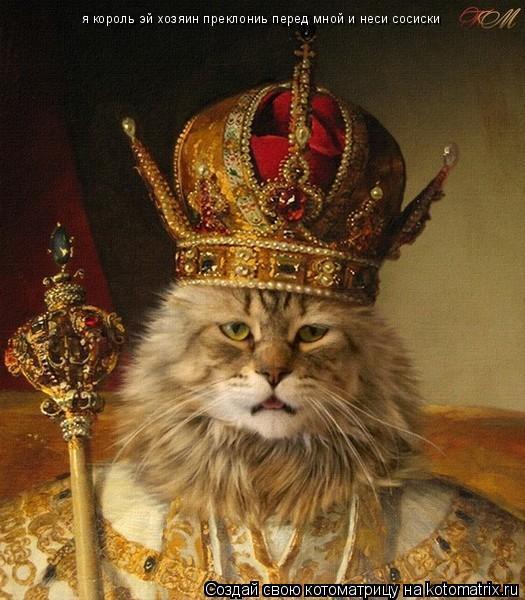 Котоматрица: я король эй хозяин преклониь перед мной и неси сосиски