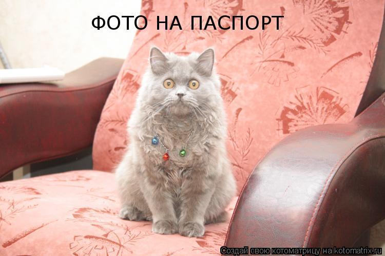 http://kotomatrix.ru/images/lolz/2011/03/05/842934.jpg